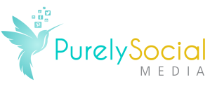 cropped-ps_logo_website1.png